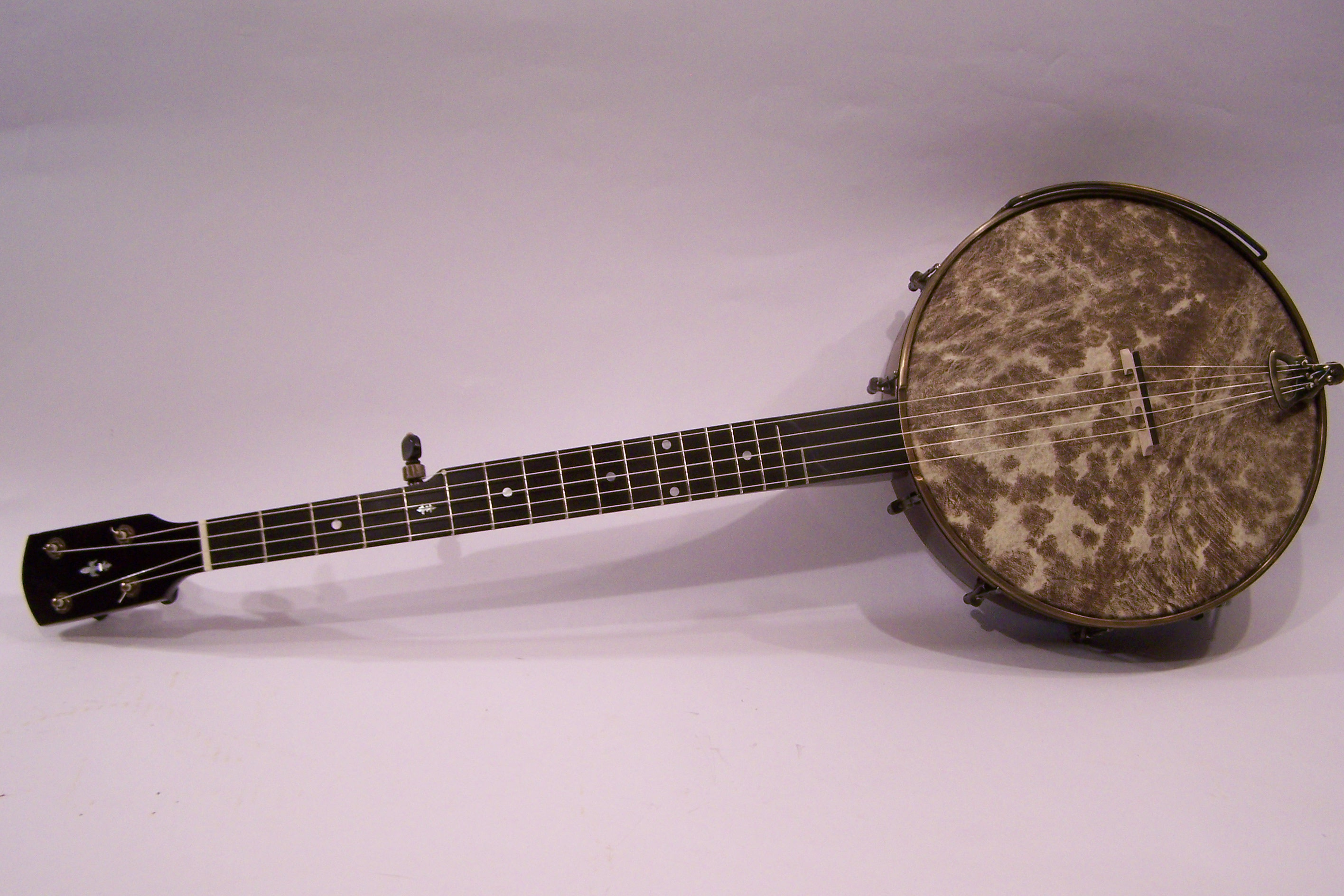 Second Life Banjo